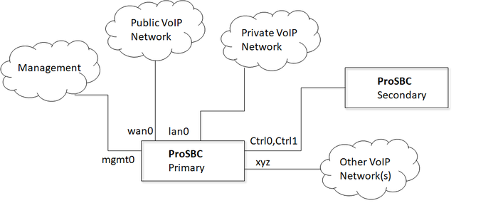 Tsbc-sw-any-networks 1+1 configuration-1.png